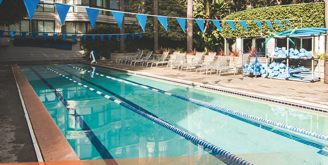 Swimming in san francisco yes you can gabriella fracchia san francisco real estate for Hamilton swimming pool san francisco